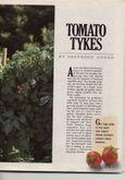 OG8807-Tomatoes3