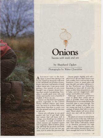 CJ8704-Onions3