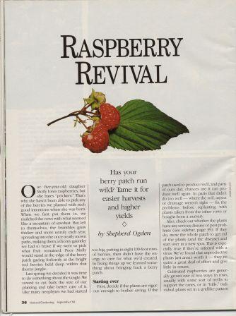 NG8907-Raspberries2