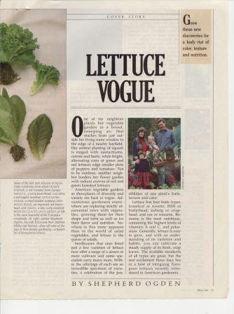 OG8905-Lettuce3
